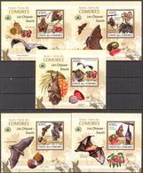 A{104} Comoros 2009 Bats 5 S/S Deluxe MNH** - Comores (1975-...)