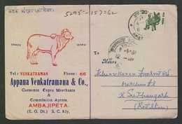 India  1981  Cow  Advertisement Postcard #  21555  D Inde India - Covers & Documents