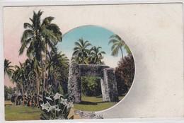 The Haamoga. Tonga. - Tonga