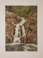 Hautes Fagnes : Cascade De Bayhon - Malmedy