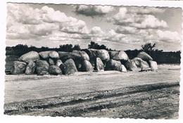 HUN-198   HAVELTE: Hunebed - Dolmen & Menhire