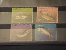 MALAWI - 1974  PESCI  4 VALORI - NUOVI(++) - Malawi (1964-...)