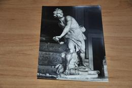 11682-  ROMA, G. BORGHESE  DAVID, BERNINI - Roma