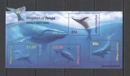 U1002 KINGDOM OF TONGA FAUNA FISH & MARINE LIFE WHALE WATCHING 1KB MNH - Baleines