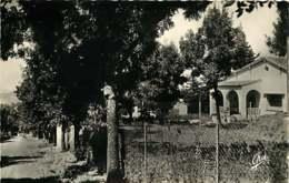 200819A - ALGERIE MOLIERE BORDJ BOU NAAMA Les Villas - Editions Photos Africaines Alger EPA - Andere Steden