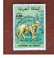 MAROCCO (MOROCCO)  -  SG 674    -   1984   DOGS: AIDI  - USED ° - Marocco (1956-...)