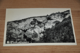 11699-  FREYR, LES ROCHERS, TETE DE NAPOLEON - Hastière