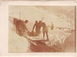 """09461 """"(BL) ALLEGHE - I VIVERI SI PORTAVANO A DORSO DI MULO - I GUERRA MONDIALE - 1917""""  ANIMATA.  FOTO ORIGINALE - Luoghi"""