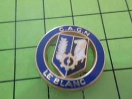 1415d PINS PIN'S / Beau Et Rare : Thème POLICE / GENDARMERIE NATIONALE CAGN LE BLANC - Police
