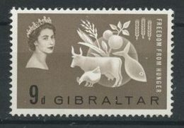 Gibraltar 1963 N° 159 ** Neuf MNH Superbe C 8 € Campagne Mondiale Contre La Faim Flore Animaux Vache Fruits - Gibraltar