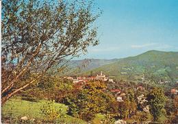 Viola - Italia