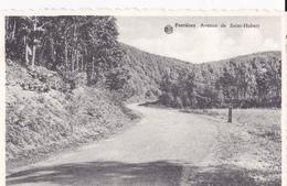 Forrieres Avenue De Saint-Hubert - Nassogne