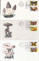 7317FM- BUTTERFLIES AND MUSHROOMS, PLANTS, SPECIAL COVER, 9X, 1992, ROMANIA - Paddestoelen