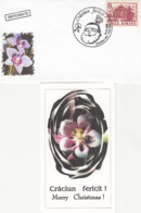 81235- SANTA CLAUS, BUTTERFLY, ORCHIDS, FLOWERS, PLANTS, LILIPUT SPECIAL  COVER AND POSTCARD, 2004, ROMANIA - Orchideeën