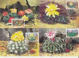 81236- CLUJ NAPOCA BOTANICAL GARDEN, CACTUSSES, PLANTS, MAXIMUM CARD, 6X, 1997, ROMANIA - Cactussen