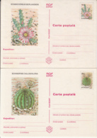 81237- CACTUSSES, PLANTS, POSTCARD STATIONERY, 2X, 1997, ROMANIA - Cactussen