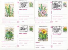 81238- CLUJ NAPOCA BOTANICAL GARDEN, CACTUSSES, PLANTS, POSTCARD STATIONERY, 6X, 1997, ROMANIA - Cactussen