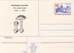 81241- MYCOLOGICAL NEWSPAPER ANNIVERSARY, MUSHROOMS, PLANTS, POSTCARD STATIONERY, 1975, CZECHOSLOVAKIA - Paddestoelen
