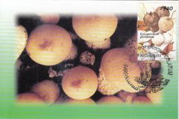81245- MUSHROOMS, PLANTS, MAXIMUM CARD, 1999, ROMANIA - Paddestoelen