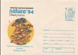 81252- MUSHROOMS, PLANTS, COVER STATIONERY, 1994, ROMANIA - Paddestoelen