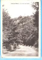 -Lustin-sur-Meuse (Profondeville)+/-1947-La Route Vers Tailfer-Villas Sur La Colline-L'Edition Belge - Profondeville
