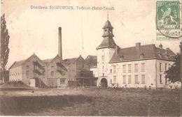 16) SINT-TRUIDEN - Distillerie St-Georges, Terbiest - Kaart In Mindere Staat ! - Sint-Truiden
