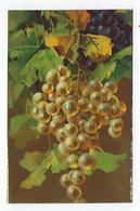 CPA - T.A.M. - Fruits - Raisins Blancs - Fiori, Piante & Alberi