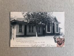 SALUTI DAL CHALET RESTAURANT BELLEVUE  SUL VIALE DELLA FONS SALUTIS A ST. VINCENT  1903 - Altre Città