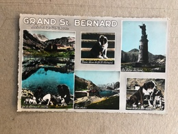 GRAND ST. BERNARDO VEDUTINE 1957 - Altre Città