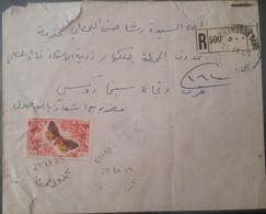 XZ2 Lebanon Rare Postmark On Registered Cover Sent From BHAMDOUN GARE 1965, Butterfly Stamp 30p - Lebanon