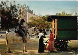 """D13 - """"EN CAMARGUE""""-SCENE FOLKLORIQUE AUX SAINTES MARIES DE LA MER-Roulotte-Cavalier  Sur Cheval Blanc-Femmes Costumées - Saintes Maries De La Mer"""