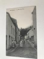 Neufchâteau  La Rue Des Oies    Edit Lallemand N° 14179 - Neufchâteau