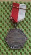 Medaille :Netherlands  - 13e Rooijmars , Sprang - Capelle  / Vintage Medal - Walking Association - Niederlande