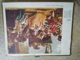 1968 - ALMANACH DES P.T.T OBERTHUR - 92 HAUTS DE SEINE - 1968 TIEPOLO Scène De Carnaval - Calendriers