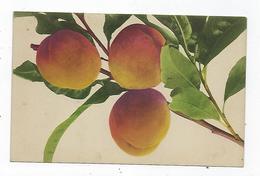 CPA - Fruits - Pêches - Rommel - Pêche - - Fiori, Piante & Alberi