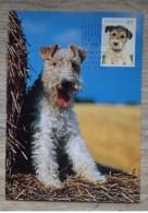 1991 25. Juli Hunde Mi AU 1257 Sn AU 1222 Yt AU 1216 Sg AU 1299 Ersttagsstempel - 1990-99 Elizabeth II