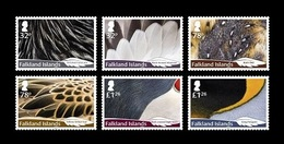 Falkland Islands 2019 Mih. 1398/403 Fauna. Feathers Of Local Birds MNH ** - Islas Malvinas