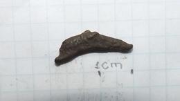 Black Sea Coin Dolphin Olbia 5th Century BC, Original 100% #36 - Griekenland