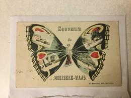 MOERBEKE WAAS  1907   SOUVENIR DE MOERBEKE WAAS   PRACHTIGE VLINDER  MET AFBEELDINGEN MOERBEKE WAAS IN DE VLEUGELS - Moerbeke-Waas