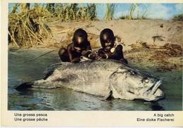 Fauna Africana - Una Grossa Pesca - 166 - 16 - Formato Grande Non Viaggiata – E 13 - Pesci E Crostacei