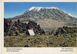 Fauna Africana - Monte Chilimangiaro - 166 - 19 - Formato Grande Non Viaggiata – E 13 - Non Classificati
