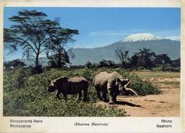 Fauna Africana - Rinoceronte Nero - 166 - 24 - Formato Grande Non Viaggiata – E 13 - Rinoceronte