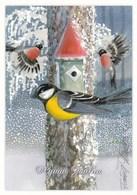 Postal Stationery - Birds - Bullfinches - Finnish Mental Health Association - Suomi Finland - Postage Paid - RARE - Finlande
