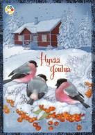 Postal Stationery - Birds - Bullfinches - Winter Landscape - Cancer Foundation - Suomi Finland - Postage Paid - RARE - Finlande