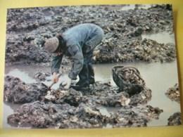 B21 4831 CPM - LA PÊCHE AUX HUITRES SUR LES ROCHERS EN CHARENTE MARITIME - TRES GROS PLAN. - Pesca