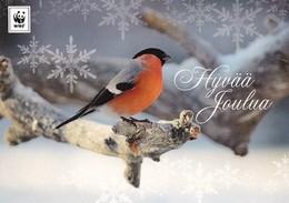 Postal Stationery - Bird - Bullfinch In Winter Landscape - WWF Panda Logo 2003 - Suomi Finland - Postage Paid - Finlande