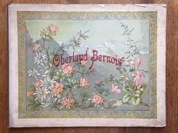(Suisse, Photographie) OBERLAND BERNOIS. Album De 30 Photographies. Braun, Vers 1910. - Géographie