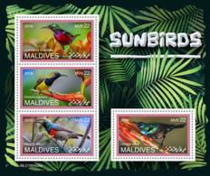 Maldives  2019 Fauna Sunbirds S201907 - Maldives (1965-...)