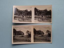 ROYAL SPORT HIPPIQUE Anvers 21 Sept 1929 ( Série N° 301 ) ANTWERP Stéréo - Ch. DU HOUX ( Zie / Voir Photos ) ! - Photos Stéréoscopiques