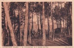 85 Longeville Sur Mer, Le Préventorium Vu à Travers Les Pins - Autres Communes